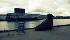 Copenhaguen Street Food -