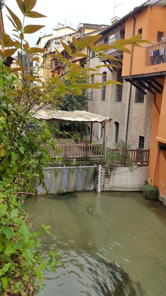 Canales desde Il Caffè e Tulipani