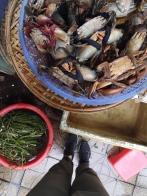 Visita al mercado - curso de cocina6
