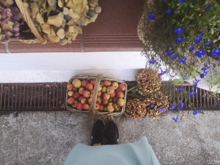 Ubicando un recuerdo en El Llar de Viri (San Román de Candamo,Asturias)